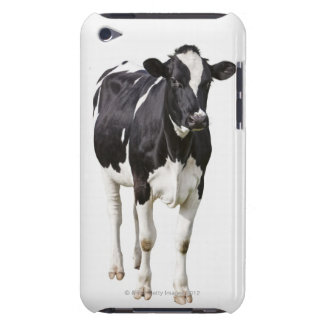 Dairy cow (Bos taurus) on white background iPod Touch Case