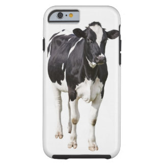 Dairy cow (Bos taurus) on white background Tough iPhone 6 Case