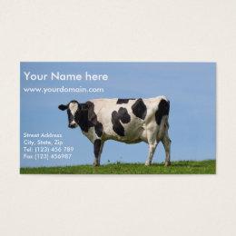 Milk cow business cards templates zazzle dairy cow business card colourmoves