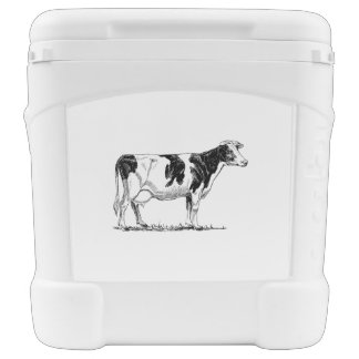 Dairy Cow Holstein Fresian Pencil Drawing Rolling Cooler