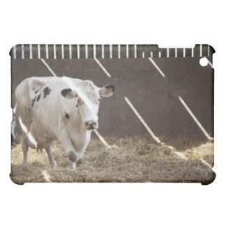 Dairy cow iPad mini covers
