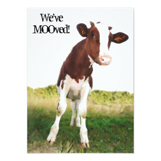"""Dairy Cow -  Painted Brown & White Holstein 5.5"""" X 7.5"""" Invitation Card"""