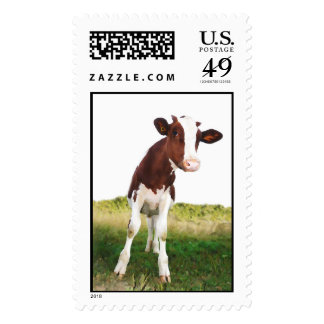 Dairy Cow -  Painted Brown & White Holstein Stamp