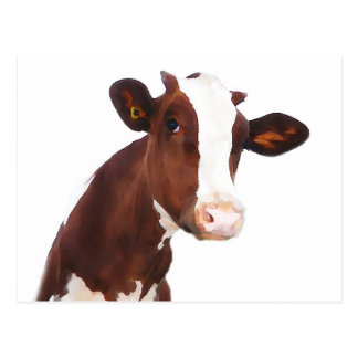 Dairy Cow -  Painted Brown & White Holstein Postcard