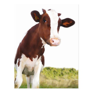 Dairy Cow -  Painted Brown & White Holstein Post Card
