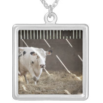 Dairy cow silver plated necklace