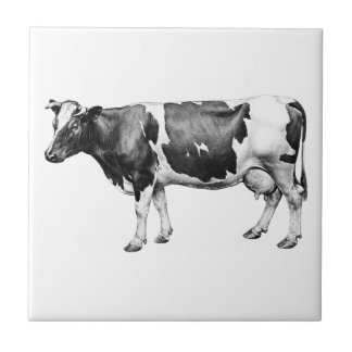 Dairy Cow Small Square Tile