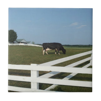 Dairy Cow Tile