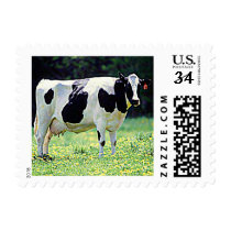 Dairy Cow (Wisconsin) Postage