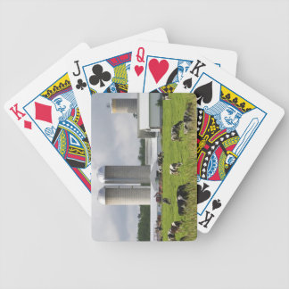 Dairy cows and farm near Taylor County 2 Bicycle Playing Cards