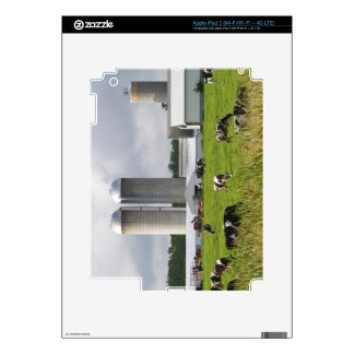 Dairy cows and farm near Taylor County 2 Decal For iPad 3