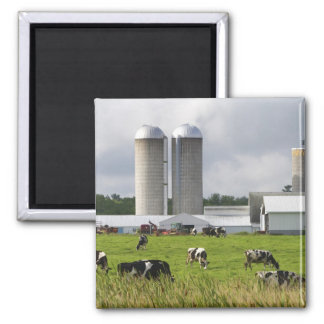 Dairy cows and farm near Taylor County 2 Fridge Magnet