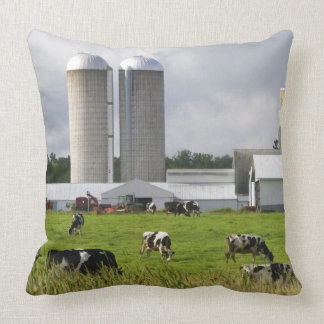 Dairy cows and farm near Taylor County 2 Pillow