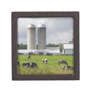 Dairy cows and farm near Taylor County 2 Premium Keepsake Box