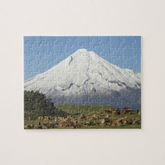 Dairy Cows and Farmland near Okato, and Mt Jigsaw Puzzle