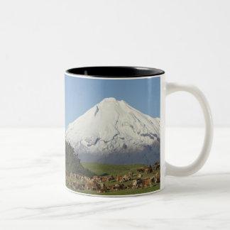 Dairy Cows and Farmland near Okato, and Mt Two-Tone Coffee Mug