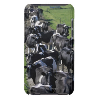 Dairy cows awaiting milking iPod touch cover