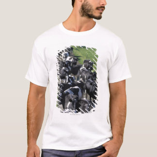 Dairy cows awaiting milking T-Shirt