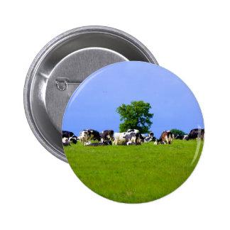 Dairy farm button