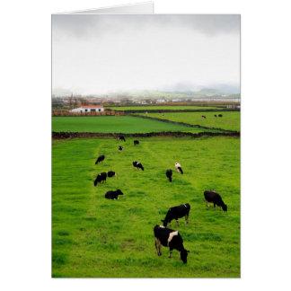 Dairy Farm Card
