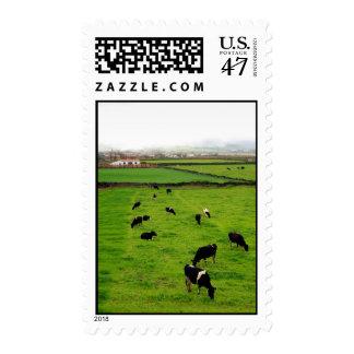 Dairy Farm Postage Stamp