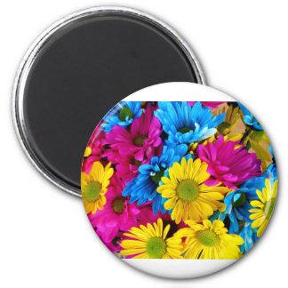Daises Flowers Magnet