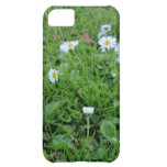 Daises on green iPhone 5C cases