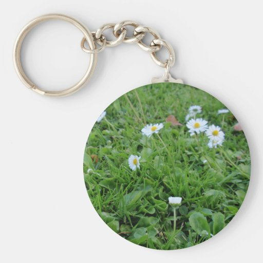 Daises on green key chain