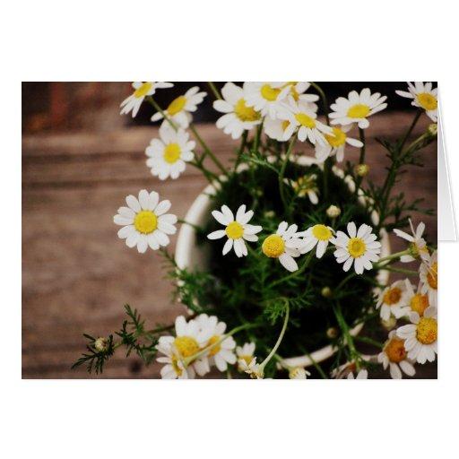 Daisie rústico en un florero tarjeta de felicitación