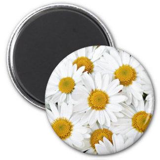 Daisies 2 Inch Round Magnet