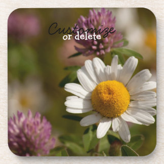 Daisies and Clover; Customizable Drink Coaster