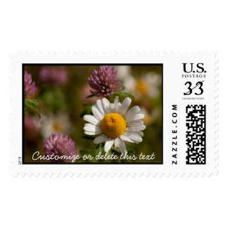 Daisies and Clover Customizable Postage