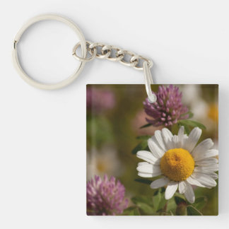 Daisies and Clover; No Text Single-Sided Square Acrylic Keychain