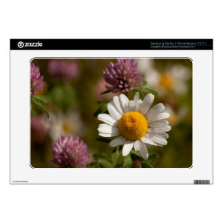 Daisies and Clover Samsung Chromebook Decals