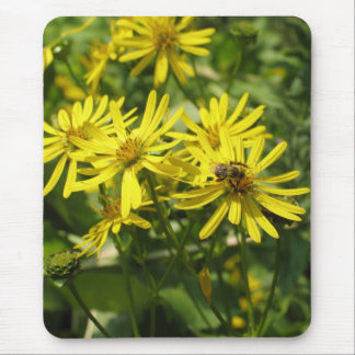 Daisies and Honey Bee Mouse Pad