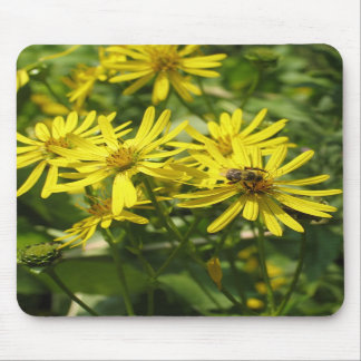 Daisies and Honey Bee Mouse Pads