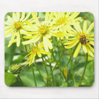 Daisies and Honey Bees. Mouse Pad