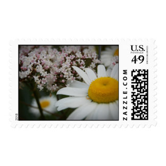 Daisies And Verbena Fowers Postage