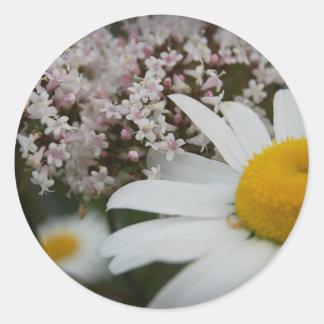 Daisies And Verbena Fowers Sticker