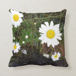 Daisies at Doolin Caves, Co. Clare Throw Pillows