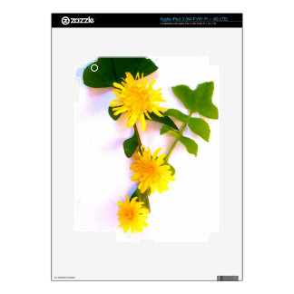 Daisies By The Cat Project iPad 3 Skin