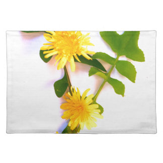 Daisies By The Cat Project Placemat