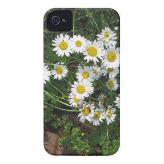 Daisies Case-Mate iPhone 4 Case