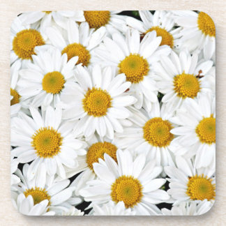 Daisies Drink Coaster