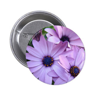 Daisies Flowers 1 Mothers Day Gifts Cards Mugs Pinback Button