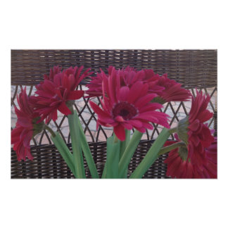 Daisies Flowers Beauty Poster