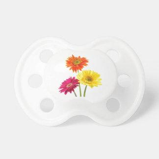 Daisies Gerbera Nature Pacifier
