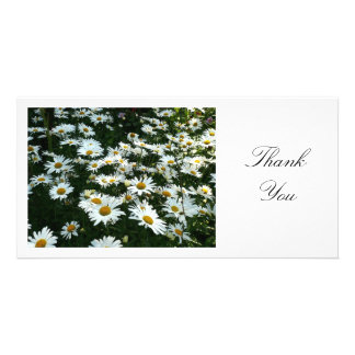 Daisies II - Thank You Personalized Photo Card