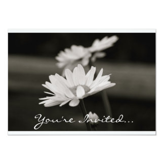 """Daisies in Black and White 5"""" X 7"""" Invitation Card"""