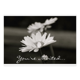 Daisies in Black and White Personalized Invite